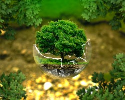 Kiedy konieczne jest uzyskanie decyzji środowiskowej?